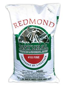 Redmond 10