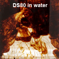 BE DS80 in water